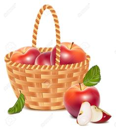 baskets png vector - Google Search