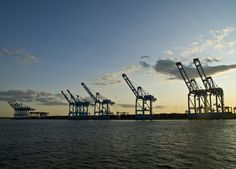 This picture makes me think of my mom, and her always moaning about the wind and how they slowed down the cranes in the harbour! Port Elizabeth, Think Of Me, New Jersey, Mood, Spaces, Building, Garden, Pictures, Travel