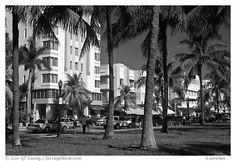 Picture/photo (Art Deco Architecture): South Beach Art Deco buildings seen through palm trees, Miami Beach. South Beach, Miami Beach, Picture Photo, Photo Art, Art Deco Buildings, Florida Usa, Palm Trees, Beautiful Places, Beach Art