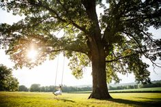 young girl swinging from beautiful old oak tree at mayowood stone barn | Photo: Janelle Elise Photography