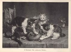 Kitten Playing with a Fox Boa cats in 19th century art