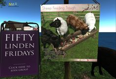 Fifty Linden Friday Offer Animated Sheep Fifty Linden Friday offer from Jian: Animated feeting sheep and apple feeder trough. Short time sale for only 50L. [...]