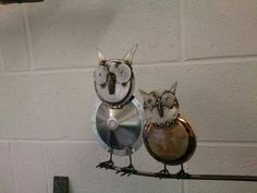 2 owl's on branch
