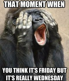 That moment when you think it's Friday but it's really Wednesday! too funny!!!