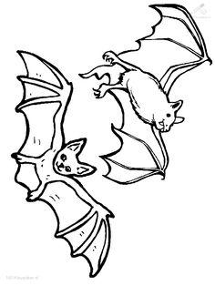Fledermaus Vorlage Xobbu Malvorlage Halloween Kurbis Basteln