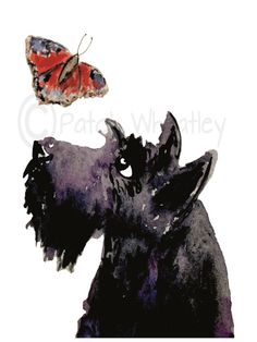 Scottish Terrier Dog & Butterfly , printed on Fine quality paper , 300gsm. Printed with UltraChrome K3 pigment ink. 8 X 6 Inches Initialed on the