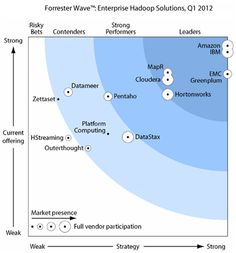 """""""IBM has the deepest Hadoop platform and application portfolio.""""  See the report."""