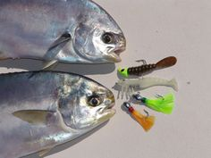 This is an article from Florida Sportsman magazine about pompano fishing with jigs. This is an article f Pike Fishing, Surf Fishing, Deep Sea Fishing, Best Fishing, Fishing Tips, Fishing Boats, Saltwater Flies, Saltwater Fishing