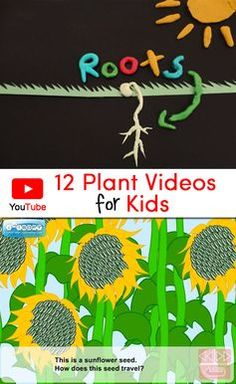 Subject science Collection of 12 Plant Videos for Kids that would be a perfect complement to a plant unit. Includes a brief description and suggested grade levels for each video. 1st Grade Science, Primary Science, Kindergarten Science, Elementary Science, Science Classroom, Teaching Science, Science For Kids, Science Activities, Spring Activities