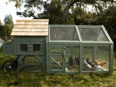 10 Creative DIY Chicken Coop designs you should build for the chickens Backyard Chicken Coops Pictures 6 Chicken Coop Kit, Mobile Chicken Coop, Chicken Coop Pallets, Portable Chicken Coop, Chicken Coop Designs, Chicken Tractors, Backyard Chicken Coops, Building A Chicken Coop, Chicken Runs