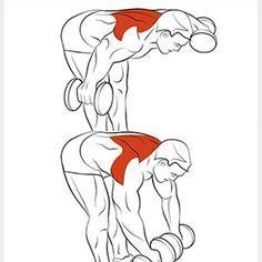 Exercise 8 Amazing Shoulder Exercises - WeGrowMuscle - CV Template with Cover Letter Fitness Workouts, Sport Fitness, Muscle Fitness, Mens Fitness, Fitness Tips, Fitness Motivation, Health Fitness, Muscle Nutrition, Fitness Outfits