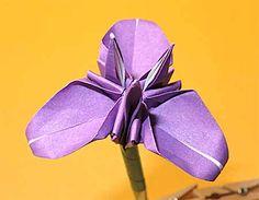 Hogyan kell összehajtani az íriszeket az origamival? Könnyű háromdimenziós módszer három szirmokkal | Setsu origami feldolgozása
