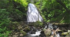 Little Switzerland Nc, Nc Waterfalls, Blue Ridge Mountains, Asheville, Long Weekend, Hiking Trails, Vacation Ideas, North Carolina, Travel Guide