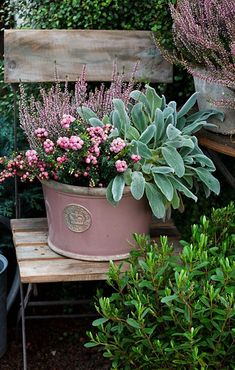Thrilling About Container Gardening Ideas. Amazing All About Container Gardening Ideas. Container Flowers, Container Plants, Container Gardening, Gardening Vegetables, Garden Care, Garden Planters, Potted Plants Patio, Indoor Garden, Garden Planning