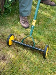 Lightly scarify the lawn, using a spring-tined rake or a mechanical scarifier to remove dead grass, also known as thatch. Learn more about the lawn tools used for aeration.
