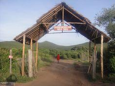 Enchoro Wildlife Camp Masai Mara - Masai Mara, Kenya Reviews - Hostelz.com
