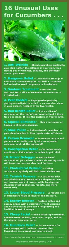 16 Great Uses for Cucumbers – They're not just for eating! - unless you have the munchies. Cucumbers are the best munchies food ever! Matters