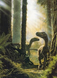 Velociraptor(?), Late Cretaceous (75-71 Ma), Discovered by Osborn -1924