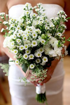 I've always wanted a daisy bouquet for my wedding Diy Wedding Flowers, Wedding Bouquets, Bride Flowers, Inexpensive Wedding Flowers, Natalie Portman Wedding, Bouquet Bride, Daisies Bouquet, Flower Bouquets, Queen Annes Lace