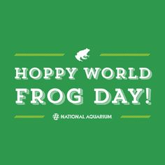 Yeah, we didn't think so. Happy World Frog Day! Heart Melting, Bays, Reptiles And Amphibians, Frogs, Books Online, Aquarium, Infographic, Coastal, Sunrise