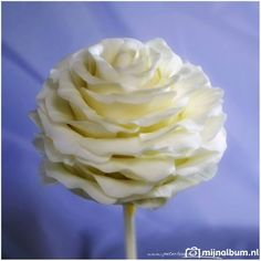 Roos-cakepop