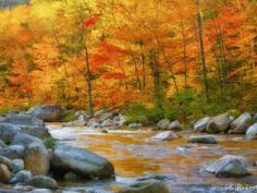 Fall in New Hampshire is heaven on earth.