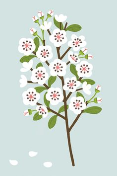 Blossom by Sarah Abbott (art for iPhone and iPad).