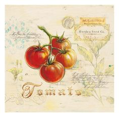 The red and luscious Tuscan Tomato Framed Wall Art is a love letter to one of cuisine's most versatile fruits. This print is expertly produced. Vintage Diy, Image Fruit, Galerie Creation, Poster Prints, Art Prints, Fruit Art, Cool Posters, Art Posters, Kitchen Art