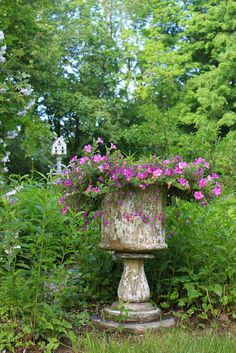 52 Flea: Paula's Cottage Gardens Love this, so beautiful! Garden Urns, Garden Planters, Container Plants, Container Gardening, Flower Containers, Beautiful Gardens, Beautiful Flowers, Jardin Decor, Vases