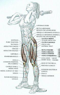 www.rubenentrenador.com Adelgazar, musculación, fitness, Entrenador Personal en Valencia. Personal Trainer