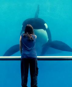 rust and bone - relationship to animals
