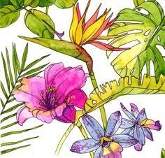 Tropical Garden by Charis Harrison, via Behance