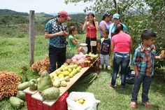 Small and lovely family-based organic farm in the middle of the hills of Maceo, Antioquia, Colombia. The younger generation of the family selling fresh fruits and delicious hand-made sauces at the front yard on a sunny morning.   #traveling #ecotourism #tours #nature