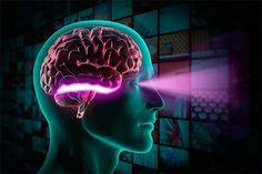 În condiţiile perceperii curente a realităţii, omul are impresia că imaginile apar instantaneu. În realitate, orice proces perceptiv presupune parcurgerea mai multor faze. Acestea se desfăşoară foarte rapid şi omul nu le sesizează prezenţa decât în condiţii dificile de percepere sau ... Social Science, Science And Technology, Brain Diseases, The Retina, Nursing Notes, Optometry, Neurology, Neurons, Neuroscience