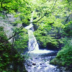 #札幌 #さっぽろ #滝 #自然 #川 #憩い #癒し #星置の滝
