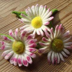Gänseblumen filzen