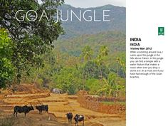 India by Thommo (Trailblazing Tom Tom) Hart