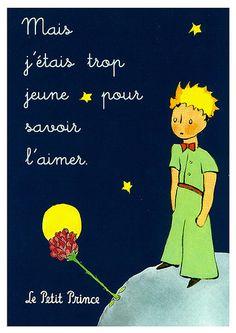Mais j'etais trop jeune pour savoir l'aimer. But I was too young to know how to love her. Aber ich war zu jung, um sie lieben zu können.  - Le Petit Prince, Antoine de Saint-Exupéry.