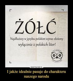 Wtf Funny, Funny Memes, Hilarious, Polish Memes, Polish Language, I Cant Even, Humor, Wise Words, Fun Facts