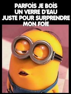 Les minions à l'eau!! Minions Images, Minions Quotes, Funny Memes, Hilarious, Jokes, Noah Building The Ark, Minion Humour, Despicable Me, Thoughts