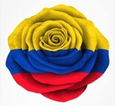 Colombia Colombian Flag, Colombian Culture, Ecuador Flag, Colombia South America, Green Zone, Colombia Travel, Flag Colors, Jesus Saves, Independence Day