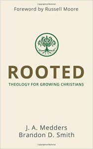 Rooted great book for young Christian theologians