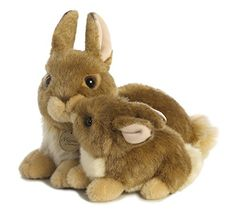 Aurora World Miyoni Mama & Baby Bunny Plush Aurora World https://www.amazon.com/dp/B019CSYMGI/ref=cm_sw_r_pi_dp_x_FlPkyb2F2ADWY