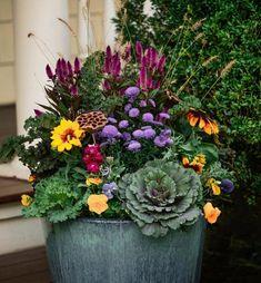 Fall Flower Pots, Winter Flowers, Fall Planters, Autumn Planter Ideas, Autumn Ideas, Fall Window Boxes, Fall Containers, Fall Container Gardening, Fall Flower Arrangements