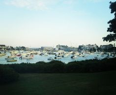 Harwich cape cod I need to go back<333