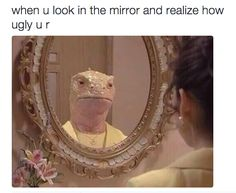 Looking in the mirror in general:
