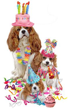 Cavalier King Charles Birthday Note Cards Are 5 1 2 X 4 1 4 And Come In Packages Of 10 Cards Cavalier King Charles Cavalier King Spaniel Happy Birthday Dog
