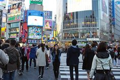 Things You Must See and Do in Tokyo
