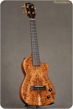Archtop Guitar, Acoustic Guitar, Ukulele Songs, Travel Music, Guitar Collection, Guitar Building, Guitar Design, Custom Guitars, Guitar Lessons