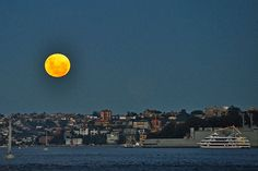 A reader picture of the SuperMoon rising over Sydney Harbour.